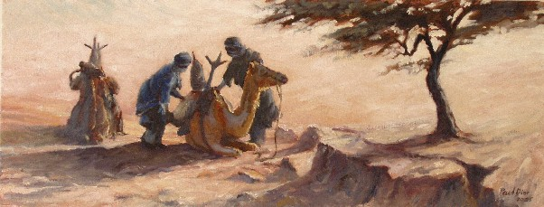 Bedouine Loading Their Camels