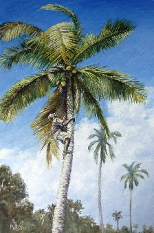 Painting of coconut palm